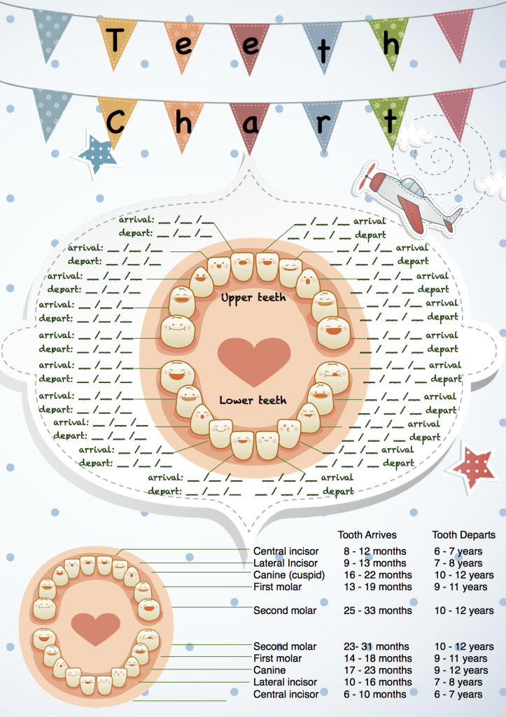 Corinna-Dental-Tooth-Chart-Keepsake