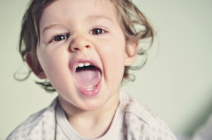 How Your Baby's Teeth Develop