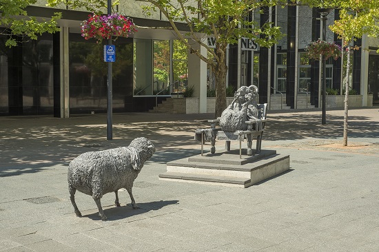 This cast aluminum art work made by an artist named Les Kosartz was inspired by James Ainslie, who managed to get the sheep flock up from the initial 700 Robert Cambell tasked him with up to 20,000 in a decade. The art work is found in Civic. Image: http://www.arts.act.gov.au/arts-in-the-act/public-art/ainslies-sheep